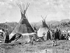 "1910 Photo, antique, Native American, Skin tepees, Shoshone Indians, 24""x18"""