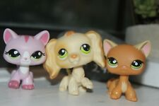 lps lot-includes one blonde cocker spaniel-two cats-#347#1788#525-all green eyes