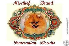 POMERANIAN  Biscuit Tin - Treats and Collectible Tin