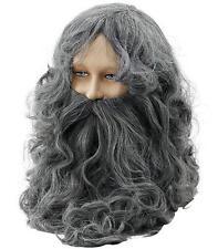 Long Grey Wizard Wig & Beard Fancy Dress Lord Of The Rings Troll