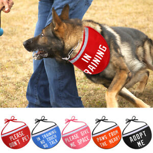 Personalised Bandana Scarf for Dogs Puppy Reflective IN TRAINING/GIVE ME SPACE