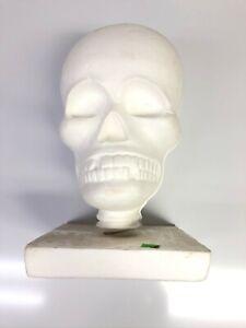 Foam Skeleton Head Display Stand Model Used