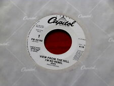 VIEW FROM THE HILL~ I'M NO REBEL~ MINT~ RARE PROMO~ CAPITOL 44199~~ SOUL 45