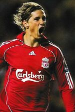 Football Photo>FERNANDO TORRES Liverpool 2007-08