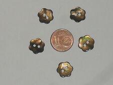 5 boutons en forme de fleur (11mm de diamètre) en nacre de couleur marron reflet
