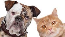 Flea Killer for Dogs 25-125 lbs 12 Capsules