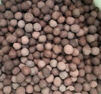 Taconite Balls Iron Ore Bulk Wholesale 1/4 Pound