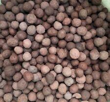 Taconite Balls Natural Rough Iron Ore Bulk Wholesale 1/4 Pound