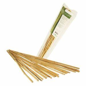 Hydrofarm Natural Bamboo Stake, Pack of 25 | HGBB (2,3,4,6,8)