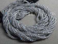 """12.5"""" strand AAA LABRADORITE faceted gem stone rondelle beads 2mm blue green"""