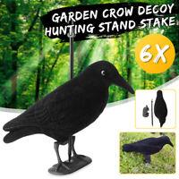 6x Garden Flocked Hard Plastic Flambeau jet black Crow Decoy For Hunting Stand