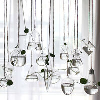 Clear Flower Hanging Vase Planter Terrarium Container Glass Home Party Decor