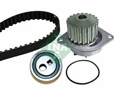 INA Water Pump & Timing Belt Set 530 0252 30