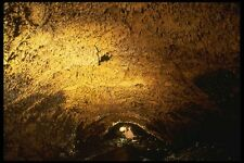194095 Lava Tube With Golden Ceiling Lava Beds Natl Monument CA A4 Photo Print