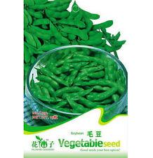 FD1290 Edamame Seed Soybean Seed Soy Bean Green Vegetable ~1 Pack 20 Seeds~