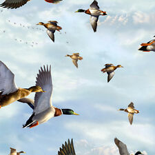 "QT - Duck Lake - Ducks in Flight Sky Blue Cotton Fabric Yardage 44"" Wide   B3"