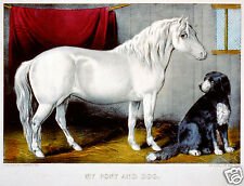 Victorian vintage Horse Art print My pony and Dog 10 x 8