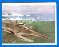 ANIMALI PREISTORICI - Panini 1975 - Figurina-Sticker n. 105 -New