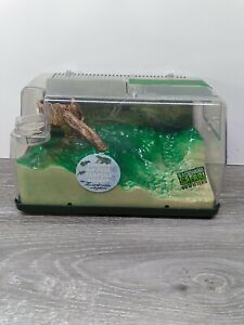 Backyard Safari Outfitters Land and Water Lighted Habitat for Tadpoles Frogs