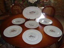 SERVICE A POISSONS 6 ASSIETTES  ET UN PLAT EN TRES BON ETAT-PORCELAINE BAVARIA-