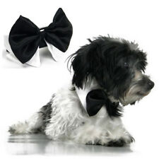Cute Gentleman Dog Pet Bow Tie Collar Tuxedo Necktie Black Formal Party Wedding