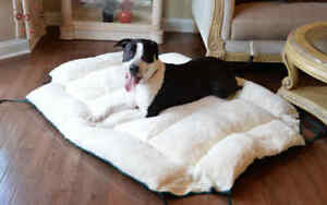 Armarkat LARGE Canvas Dog Pet Bed and Mat in One! Green Machine Washable