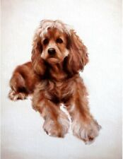 American Cocker Spaniel. Original Hand Oil Painting on Canvas