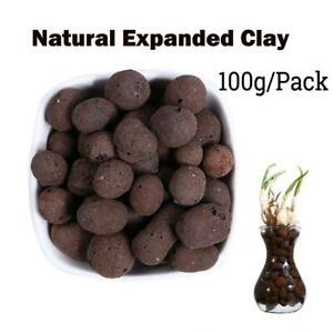 Organic Expanded Clay Pebbles Grow Media Orchids Hydroponics Aquaculture 100g.