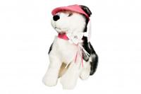 SOFT TOY SIBERIAN HUSKY DOG Maria Sharapova Sasha 26cm new lovely bnwt