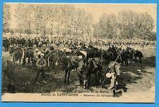CPA: Marais de Saint-Gond - Réserve de cavalerie  / Guerre 14-18 / 1915