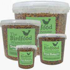 More details for norfolk feeds dried mealworms - premium quality wild bird food - treat tub, worm