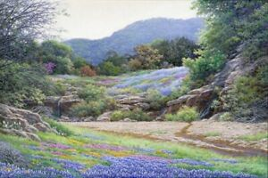 Hill Country Color by Larry Dyke Texas Bluebonnets Landscape Signed Canvas 🧡