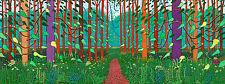 "David Hockney ORIGINALE RA Poster Print ""arrivo della primavera in woldgate"""