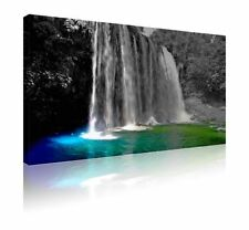 Nature Pictorial Modern Wall Hangings