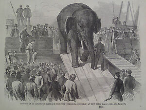 Unloading a Elephant New York Harbor 1866 Antique Print Harper's Weekly