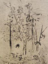Georg Walter Rössner (1885-1972) - aguafuerte: golondrinas y árboles (?)