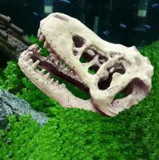 Aquarium Terrarium Fish Tank Dinosaur Crocodile Skull Bone Resin Ornament Decor