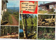 08 - cpsm - Bonjour des Ardennes  (H4669)