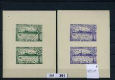 BM0391, Syrien, xx, V33 - V34, 2 Vorlageblocks mit bildgleichen Marken