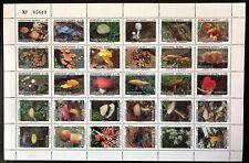 Honduras #C951 Sheet of 30 1995 MNH-