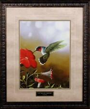 Ruby Throated Hummingbird By Jim Hansel Framed Art Print 21 X 25