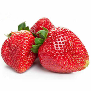 50 Giant Strawberry Seeds, Garden Fruit Plant, Sweet And Delicious - REF B6
