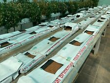 Coco Coir Hydroponic Grow Slab Commercial Growing Media