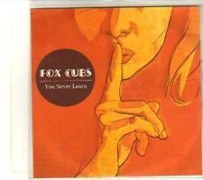 (DT394) Fox Cubs, You Never Learn - 2008 DJ CD