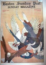 "1915 Cover Only ""Boston Sunday Post"" w/ Beautiful Colored Picture of Pigeons *"