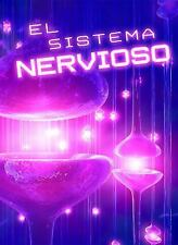 El Sistema Nervioso (Exploremos la Ciencia) (Spanish Edition)-ExLibrary