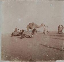 Afrique la Sahara Photo Plaque de verre Stereo Positive Vintage ca 1910