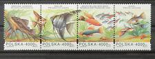 - Polen Poland 1994 Mi. Nr. 3505-3508 ** postfrisch MNH Fisch fish