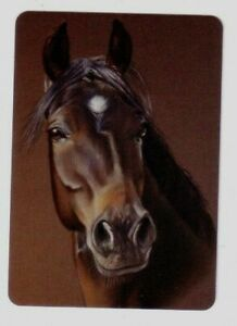 Single Brown  Horse Head Portrait -- Modern Wide Linen Swap Playing Card