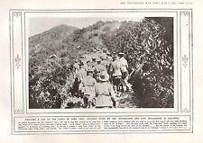 1915 WWI PRINT ~ AUSTRALIANS & NEW ZEALANDERS IN GALLIPOLI GUNS UP GABA TEPE